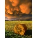 Rising storm, Heye Puzzel 1000stukjes