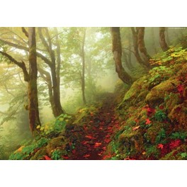 Path, Heye Puzzel 1000stukjes