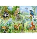 Nature Study, Hop Puzzels 250st XL stukken