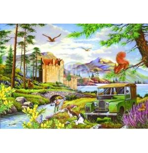 House of Puzzles. 500stukjes   Alles unieke stukken.  Hooked  The Ruxley Collection