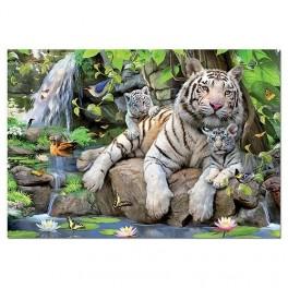 Educa1000st Puzzel  White Tigers  Afm. 48x68cm