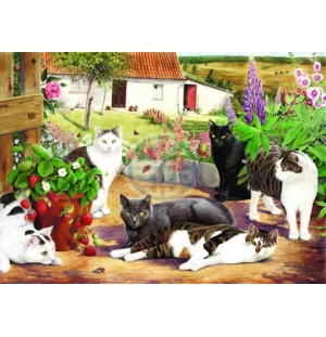 """House of Puzzles. BIG 500stukjes Cool Cats  """"The BramptonCollection """""""