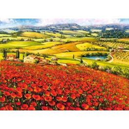 Klaprozen in Toscane