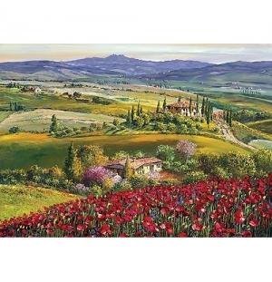 Toscana 1000st