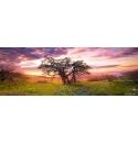 Oak Tree, Heye Puzzel 2000stukjes