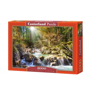 2000st The forest stream