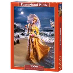 A  walk in the Moonlight, 1000stukjes Castorland