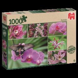 Orchids, jumbo 1000stukjes