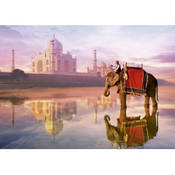 Elephant at Taj Mahal, Educa 1000stukjes