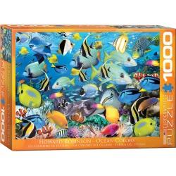 Ocean Colors, Eurographics 1000stukjes