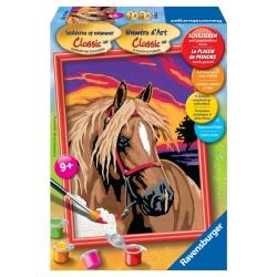 Droom paard serie E schilderen op nummer