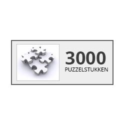 3000/ 4000 stukjes Castorland - Puzzel & Spel